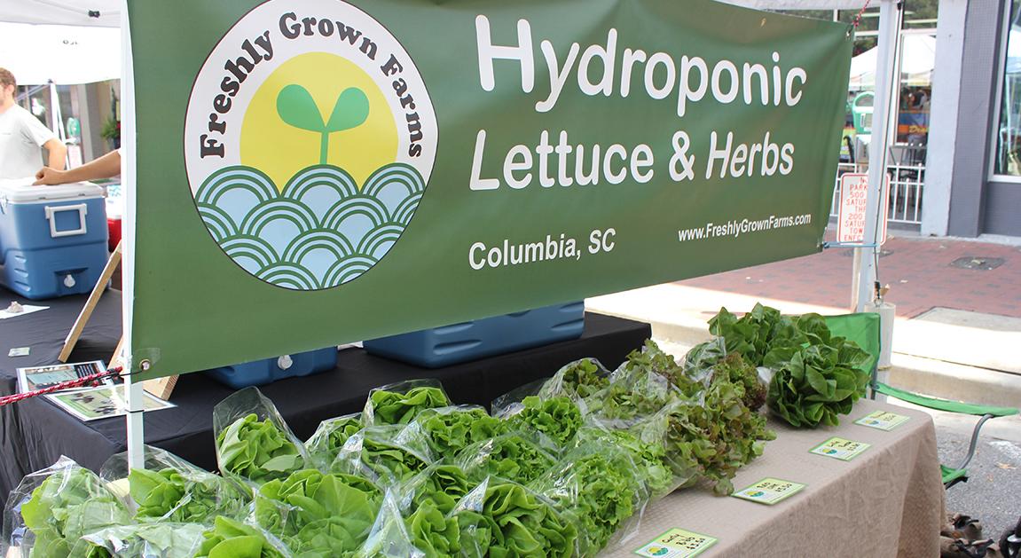 Soda City Hydroponic Lettuce Slider